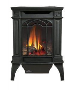 Napoleon GDS20N Fireplace