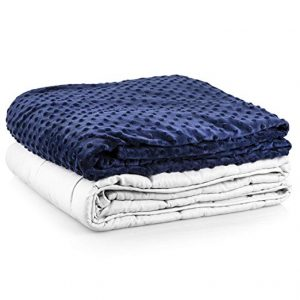 Roore 10 lb Children or Adult Navy Blue and Gray Weighted Blanket