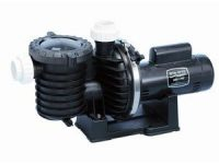 Pentair Sta-Rite P6RA6F-206L Max-E-Pro Standard Efficiency Single Speed Up-Rated Pool and Spa Pump,
