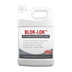Rainguard International Blok-Lok Sealer